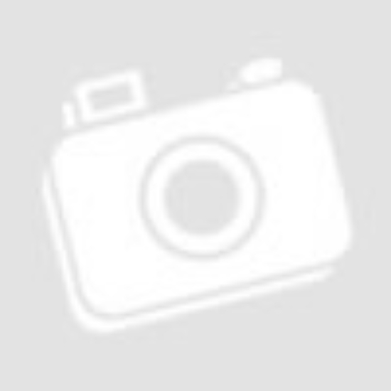 SwagDog Design Graffity poszter - husky (40x50 cm)